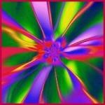 Цвет цветка или цветовые гаммы цветов